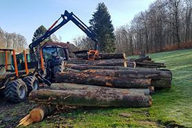 Holzvorrat zum Spalten